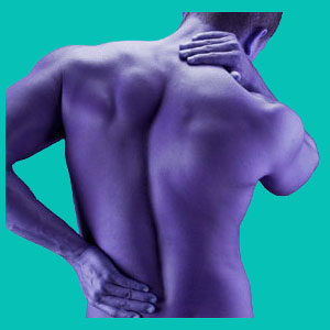cure back pain network