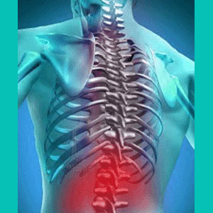 herniated disc groin pain
