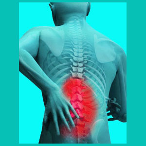 herniated disc in the lower back