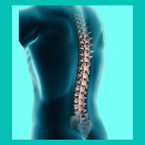 herniated disc in the middle back