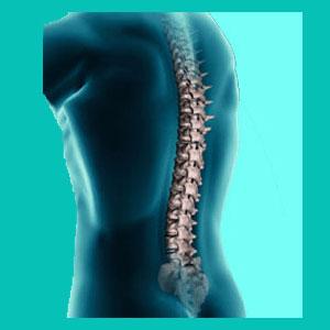 herniated disc rehabilitation
