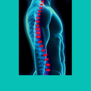 physical therapy for herniated discs